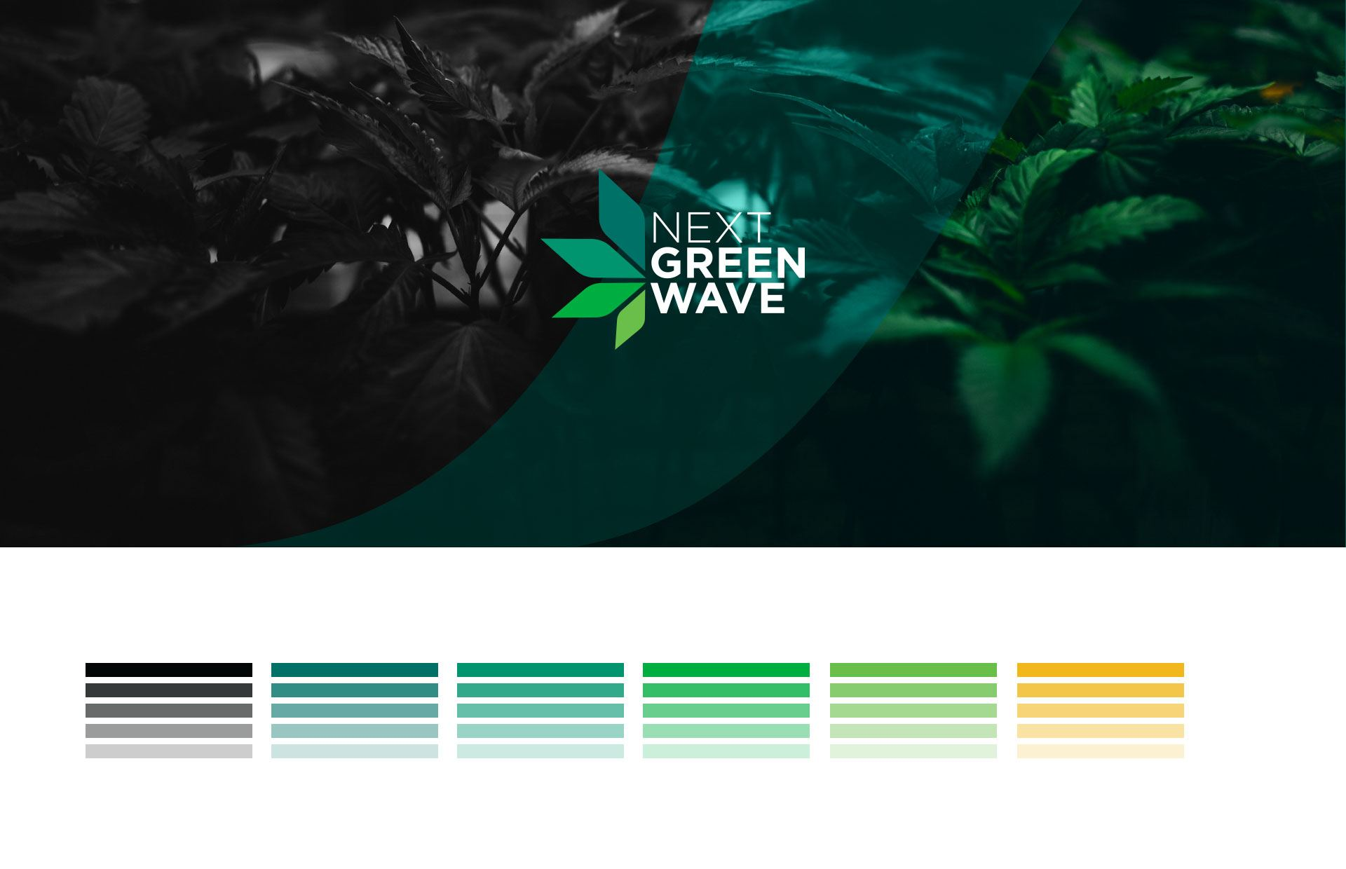 Next_green_wave_CaseStudy2019_01